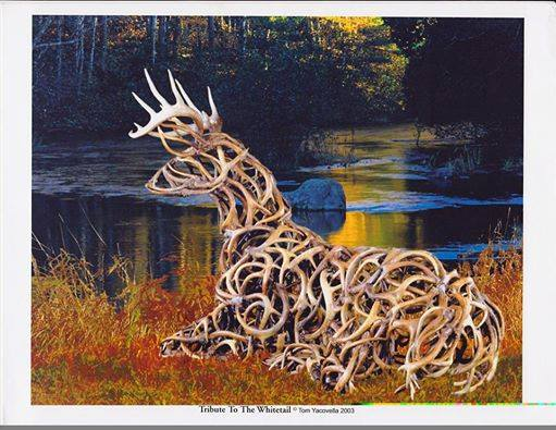 Deer art made from antler sheds