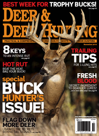 Deer & Deer Hunting November 2010