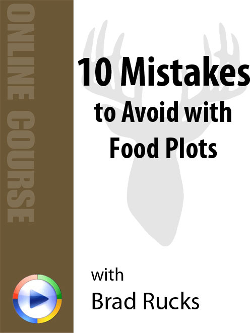 10 mistakes to avoid