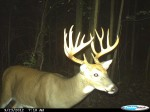 Chris Clay Michigan 14 point Cuddeback
