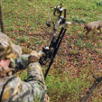 Eleven states still have some kind of limit or prohibition on Sunday hunting.