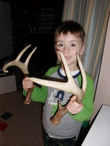 Deer antler sheds are in season!