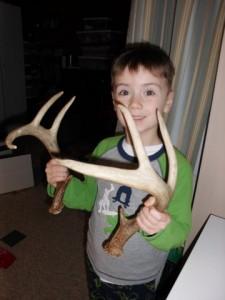 Deer antler sheds are in season!