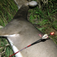 The combination of bow, arrow, broadhead, nock, sight and practice help put this fat doe on the ground to get the season started right! (Photo: Dan Schmidt/DDH)