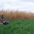 Don Higgins Real World Wildlife food plot