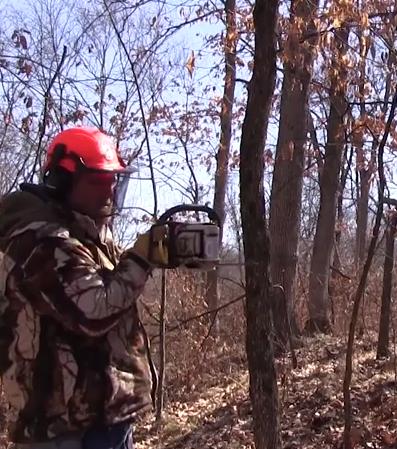 GEB  Steve Bartylla uses a chain saw to hinge cut