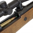 Gunshop Rifle
