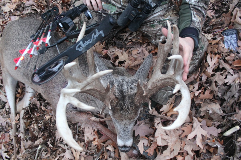 The DUDE carries 28 points (21 scoreable)--the biggest buck I've ever had the good fortune to see in the woods.