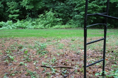 Intro To Archery Updates For Vermont S Archery Deer Season