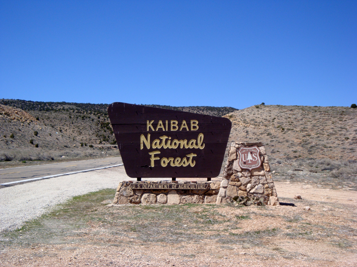 Kaibab+Sign
