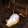 Linet Navarro European skull mount cake fondant antlers