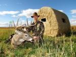 Montana Whitetails1