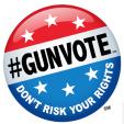 NSSF Gunvote logo