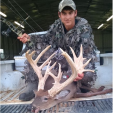 North Carolina fake buck antlers screwed into skull