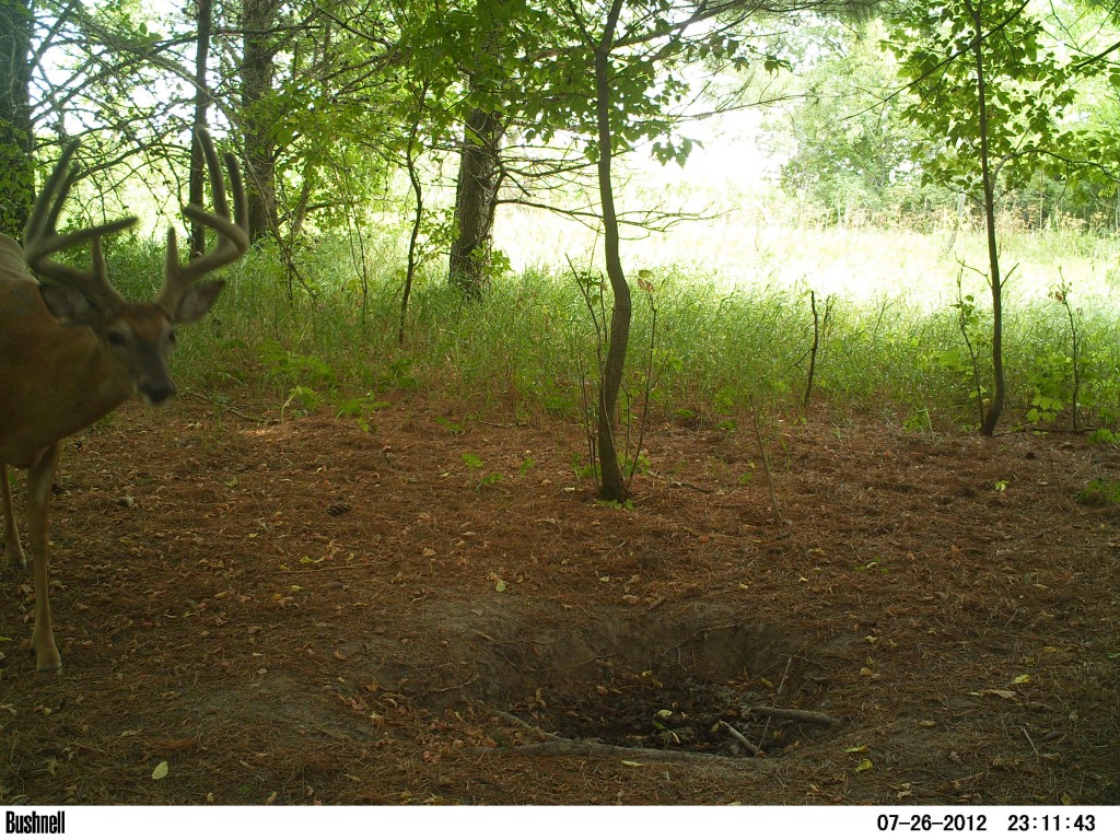 I have a history with this buck... Mean Streak. And I hope to have an encounter with him this winter.