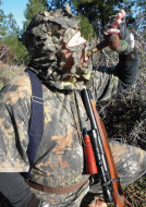 predator-elevated-positions-may-yield-more-coyotes