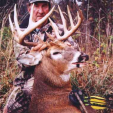 Pat Gaffney of RAM Outfitters guides hunters to big bucks on great land in the upper Midwest.