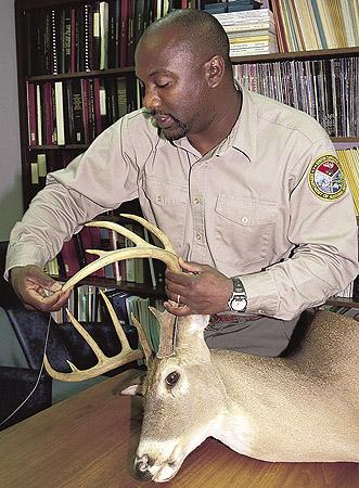 SC deer scoring