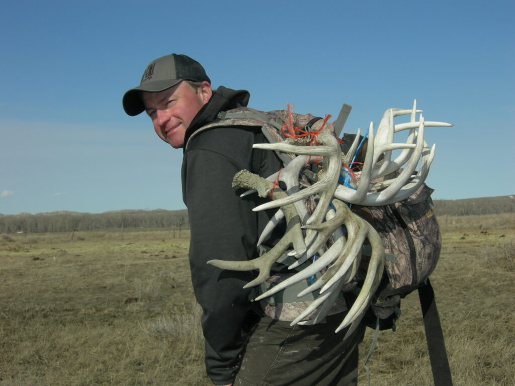 Mark Kayser loads up his backpack with sheds after a successful morning of checking different areas and making notes about locations so he'll be ready for next season. (PHOTO: Copyright Mark Kayser)
