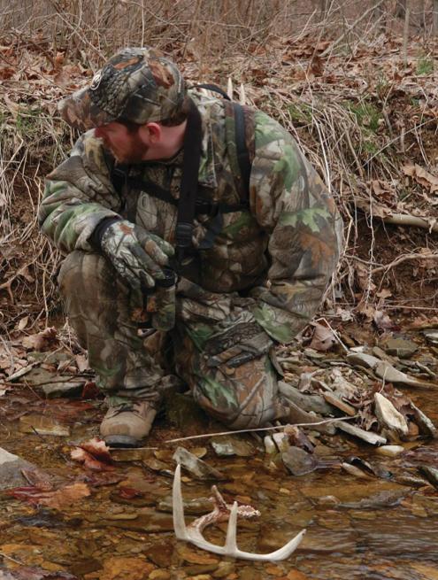 Shed Hunting Tips For Beginners Deer Amp Deer Hunting