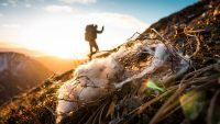 Express Your Hunting Passion in the Sitka #Diverge5 Photo Contest
