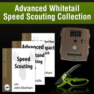 Speed Scout