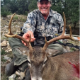 TED  Mathews Halon bow buck