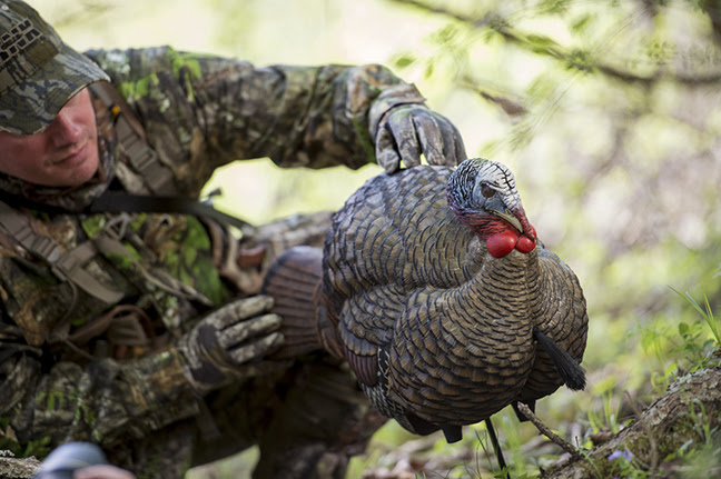 Zink Avian-X turkey decoys offer lifelike realism for whatever setup you plan to use.