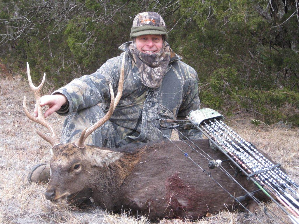 Sika deer and Ted go together like rock 'n roll and high volume!