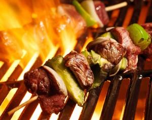 Venison kebabs1