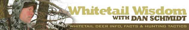 Dan Schmidt Deer Blog
