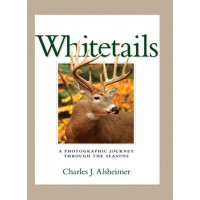 Whitetails- A Photographic Journey