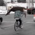 Yooper Bike Deer