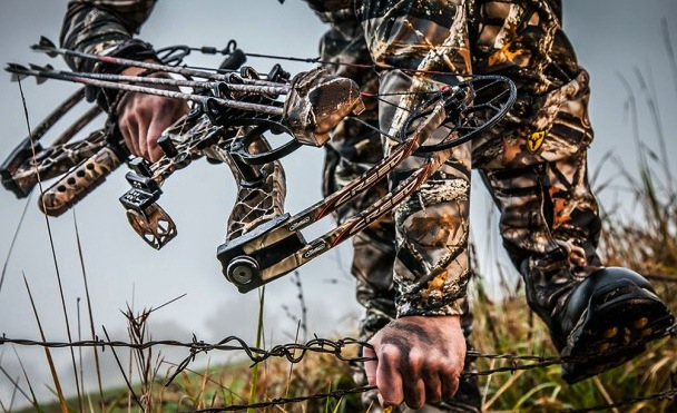 The Mathews Creed has a split limb design among other well-tested features.
