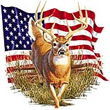 american-flag-deer