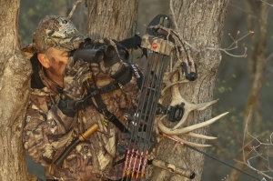 Learn how to pick optimal tree stand sites.
