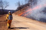 Controlled burning is beneficial to woodlands and provides new growth for wildlife.