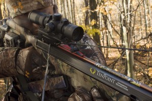 whitetail hunting with crossbows