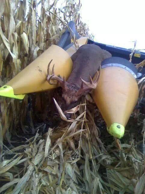 deer combine