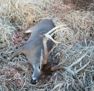 Record 8 pointer