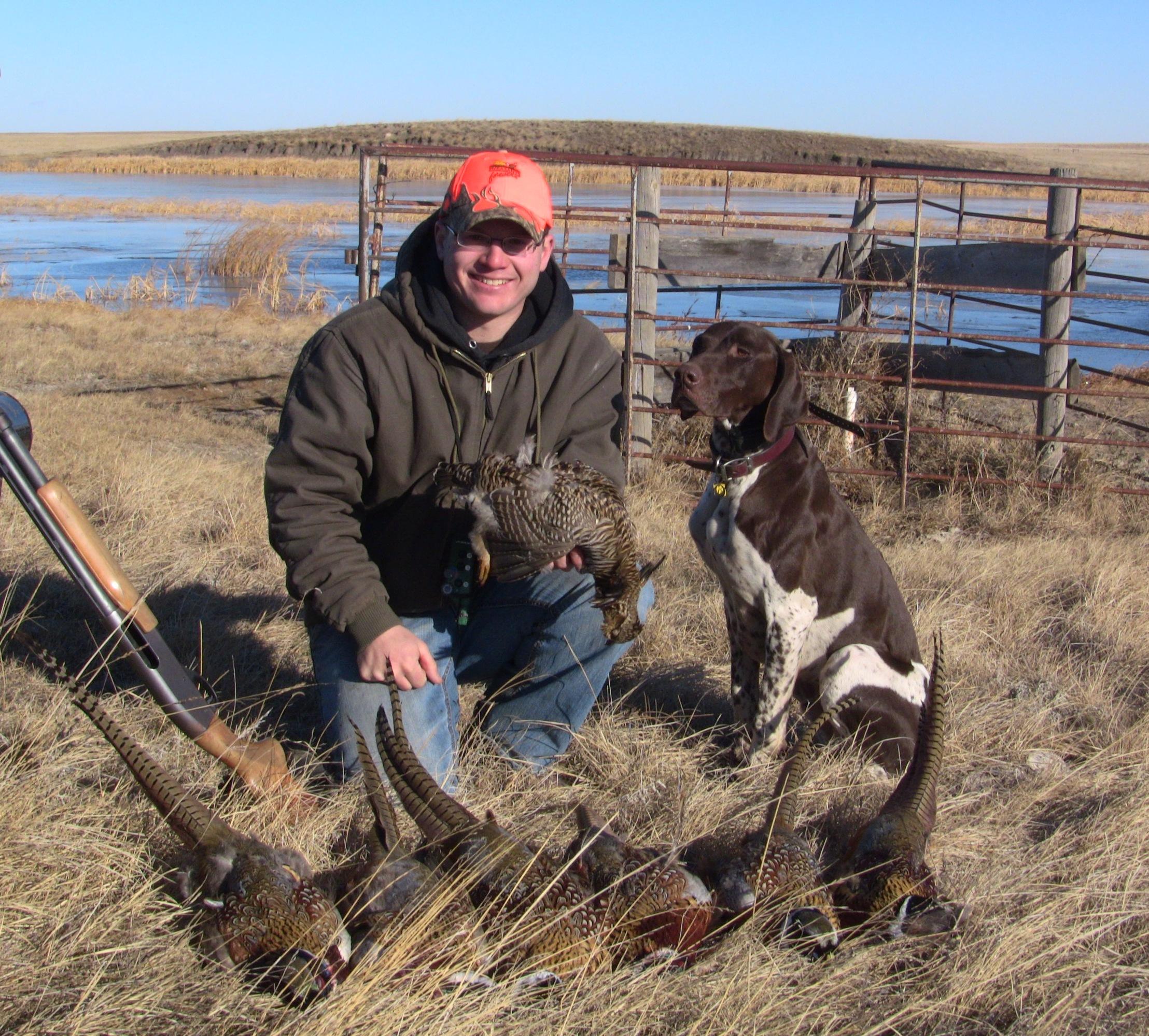 last-weekend-pheasants