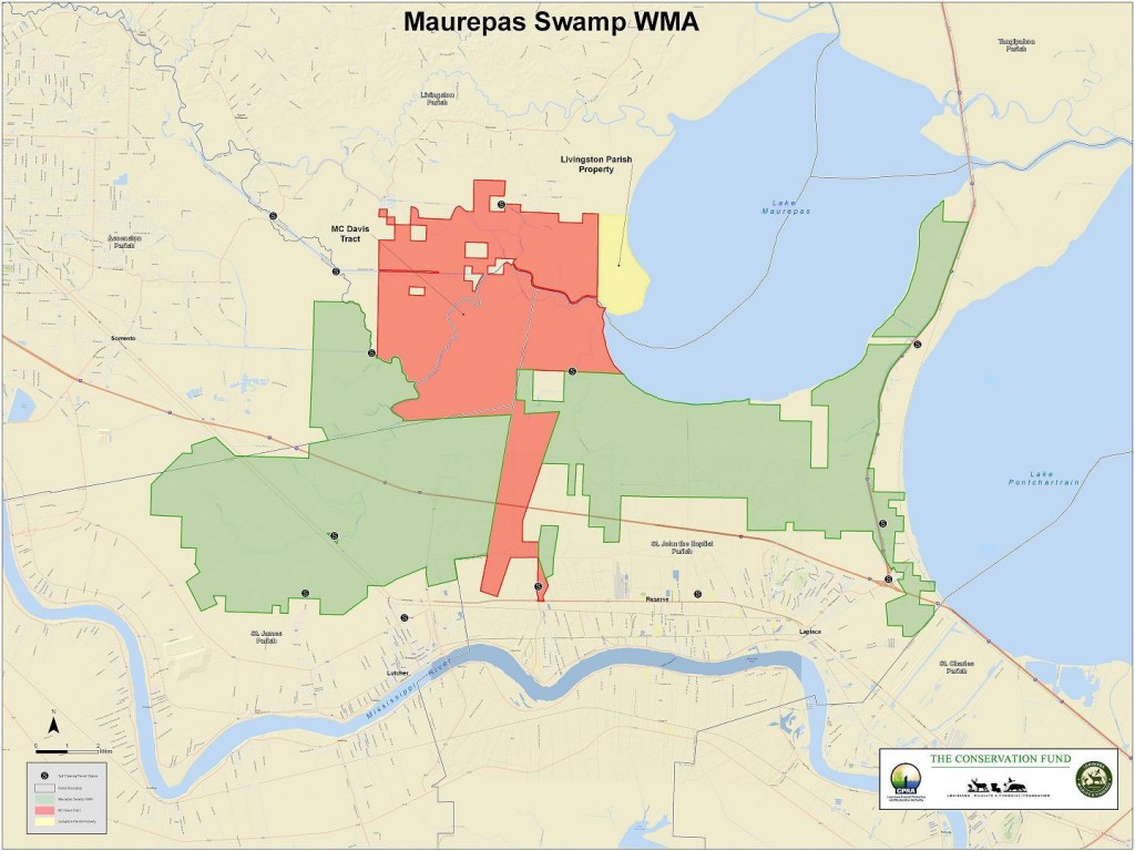 Maurepas Swamp WMA (Graphic: The Conservation Fund)