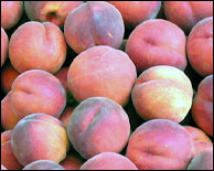 Millions of peaches, peaches for me ...