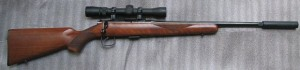 Alabama may allow hunting with suppressed rifles if a proposal is approved and signed (Photo: Wikimedia)